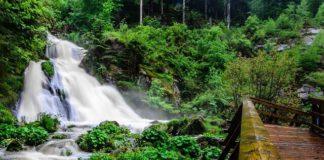 Atemberaubendes Naturschauspiel der Gutach Wasserfälle in Triberg