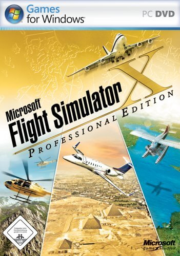 Flight Simulator Professional - Computerspiele für Senioren - Flugsimulator