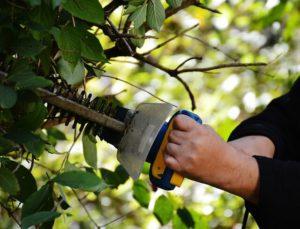 Gartenarbeit im Sommer - Hitze im Sommer für Senioren