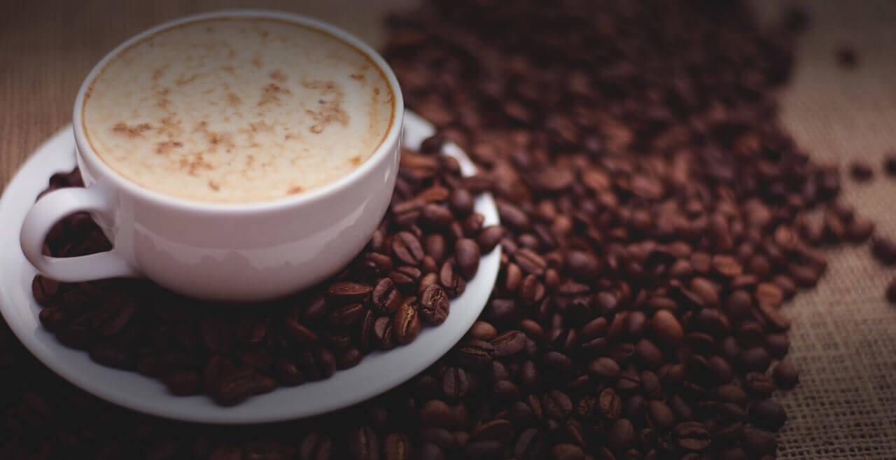 Kaffeesatz Als Dunger Senioren Leben
