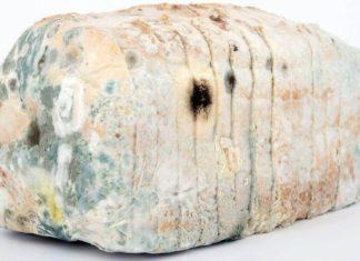 Schimmeliges Toastbrot - Warum schimmelt Toastbrot und wie kann ich das verhindern
