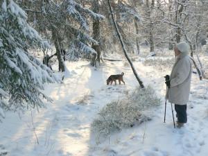 Senioren und Rentner - Spaziergang bei jedem Wetter ob Sonne, Regen oder Schnee