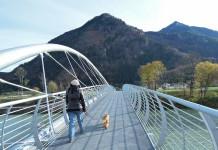 Senioren und Rentner - Spaziergang mit dem Hund fit und beugt Krankheiten wie Demenz und Alzheimer Diabetes Bluthochdruck und Fettleibigkeit vor