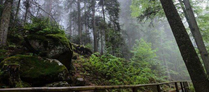 Triberg im Schwarzwald – Wanderweg an den Triberger Wasserfällen